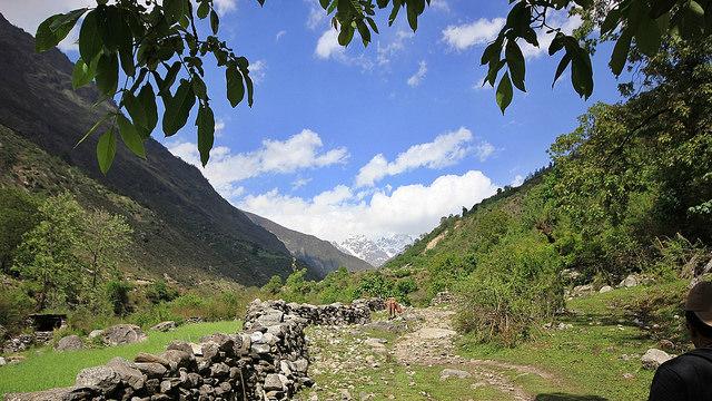 Top 05 Treks in Uttarakhand To Explore