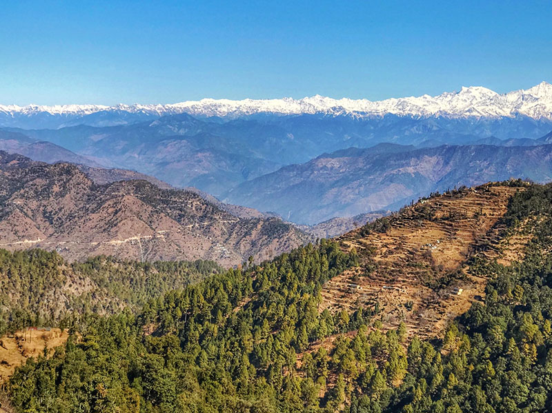 Top 05 things to do in Kanatal